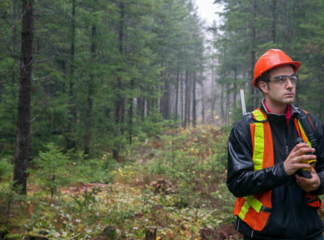 Forestry SFI ATFS-IQC ISO9001